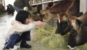 新农业——颠覆传统农业的新方向