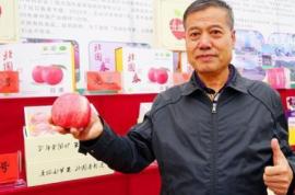 应用高新技术 栽培高品质苹果