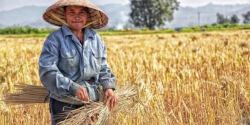 我国发展经济是以农业为基础,有了农民的帮助,我国才能独立自主