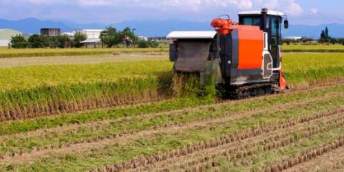 优质农业公司,营收从96.96亿大增至238.2亿,PE仅18.63倍